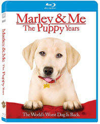 marley and me 2 dvd