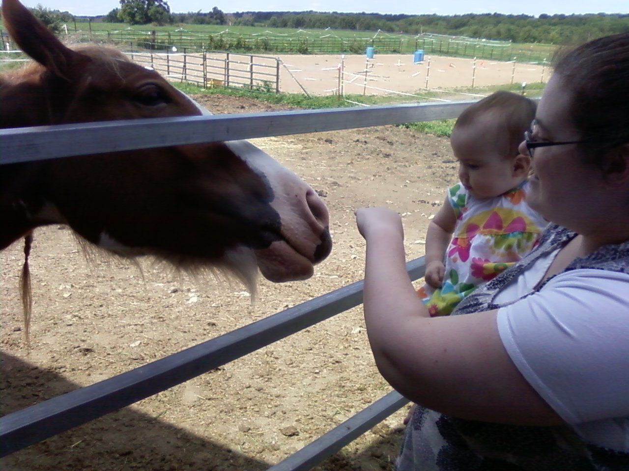 rissa and horse aug 2011