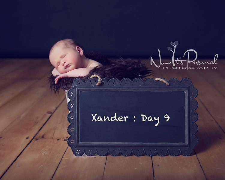 xander day 9