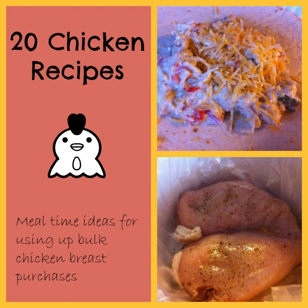 20 chicken recipes