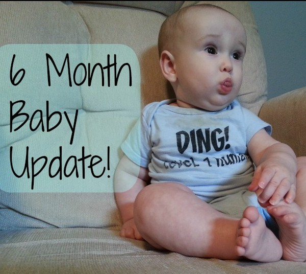 6 month baby milestone update