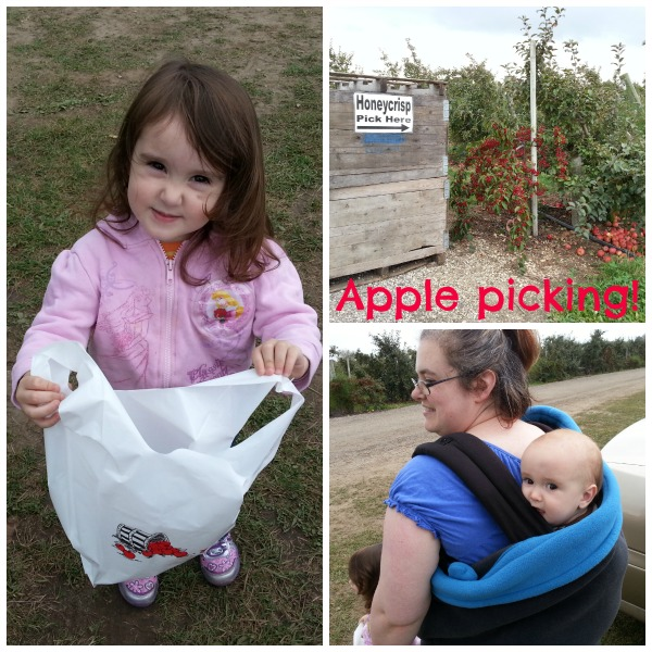 family apple picking collage #shop