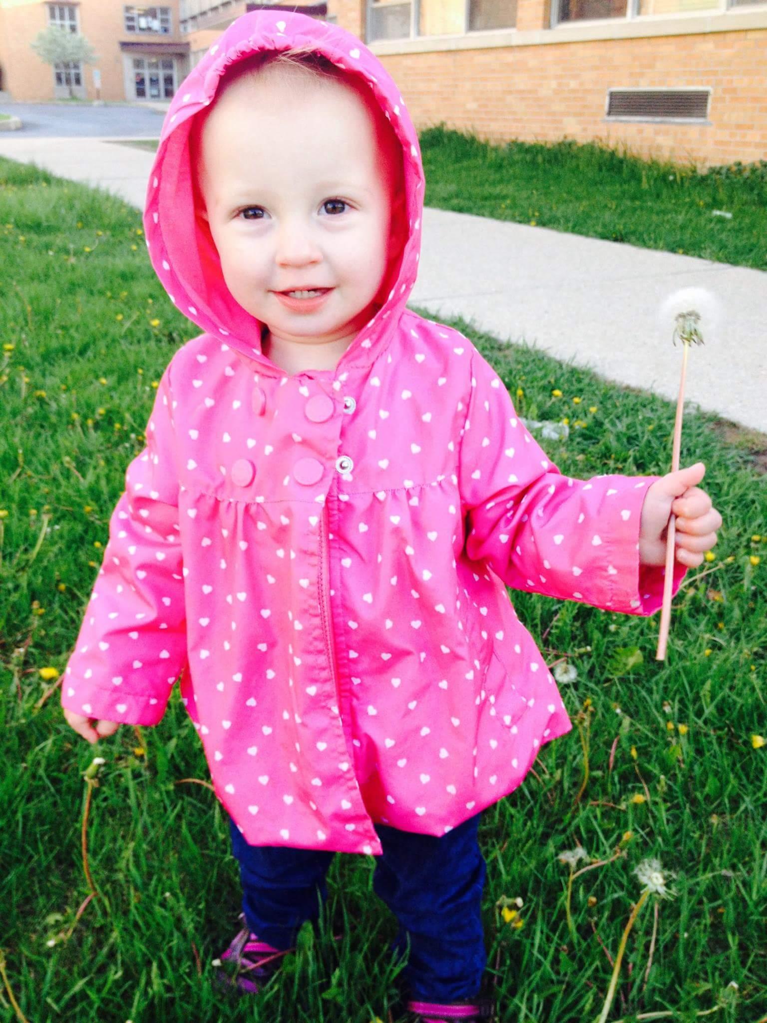 Toddler in pink jacket holding dandelion