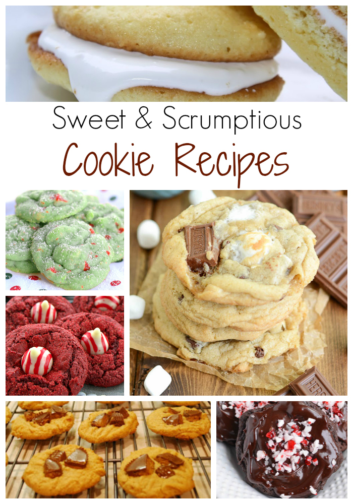 Sweet and Scrumptious Cookie Recipes