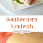 Sandwiches don't have to be boring! Fire up those taste buds when you make this Southwestern Turkey Sandwich recipe for lunch or dinner. Perfect to pack for a picnic with the family!