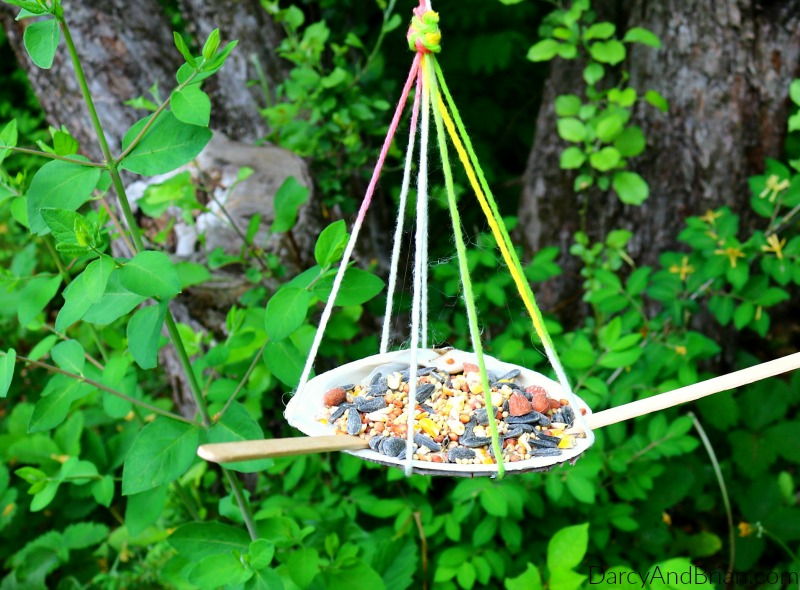 Learn how to make this easy seashell bird feeder craft with the kids.