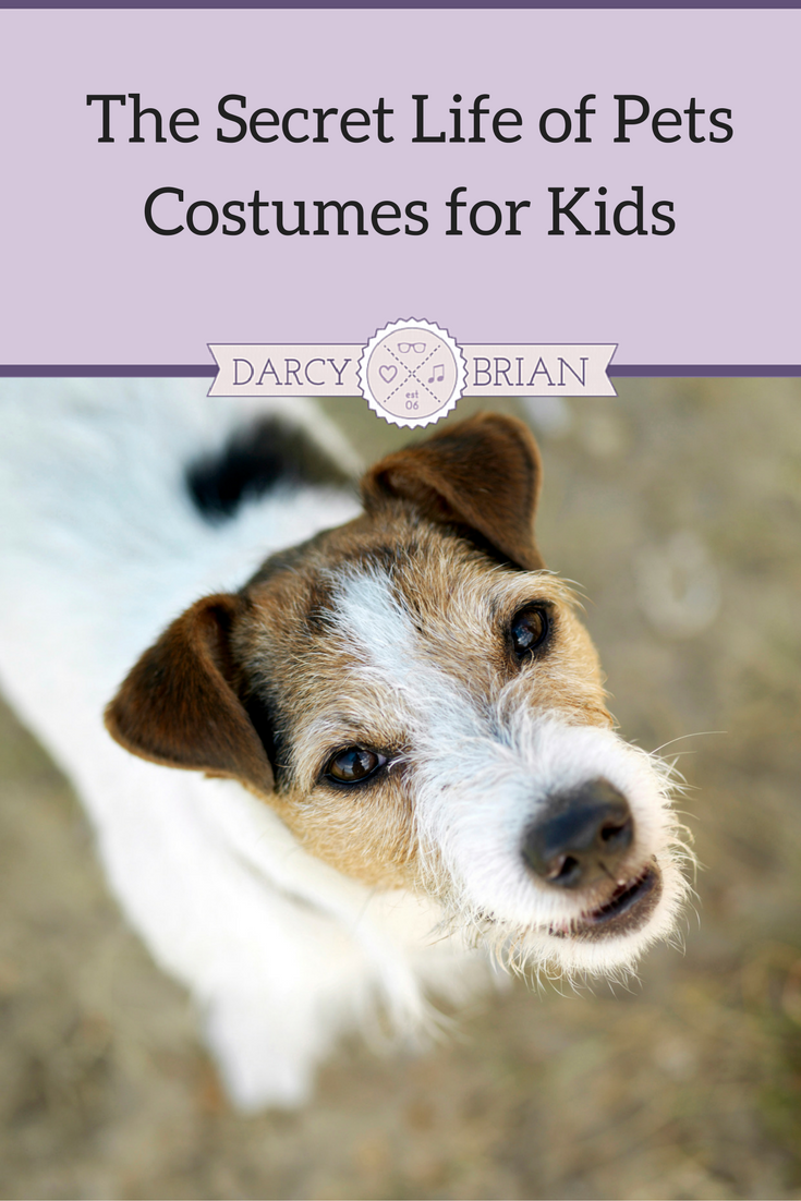 Do your kids love to dress up like their favorite movie characters? The Secret Life of Pets costumes for kids are sure to be a hit this Halloween or for pretend play.