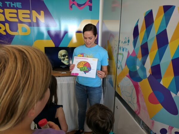 Touring the Curiosity Cube and learning about the cerebellum