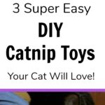 These homemade catnip toys are so easy to make and use simple supplies! Have an old sock that's missing its matching pair? Or an empty toilet paper tube? Click for the tutorial to make 3 DIY catnip toys. Your cat will think they are absolutely purrfect, but will act cool like they are no big deal. #MeowMixatMeijer #CollectiveBias #AD