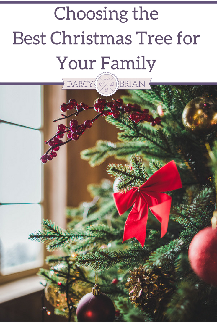 Choosing The Best Christmas Tree For Your Family Life