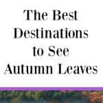 Great ideas for fall road trips and family travel! Need suggestions for the best destinations to see autumn leaves? Enjoy gorgeous fall foliage when you go leaf peeping in Wisconsin, Michigan, New Hampshire, and more!