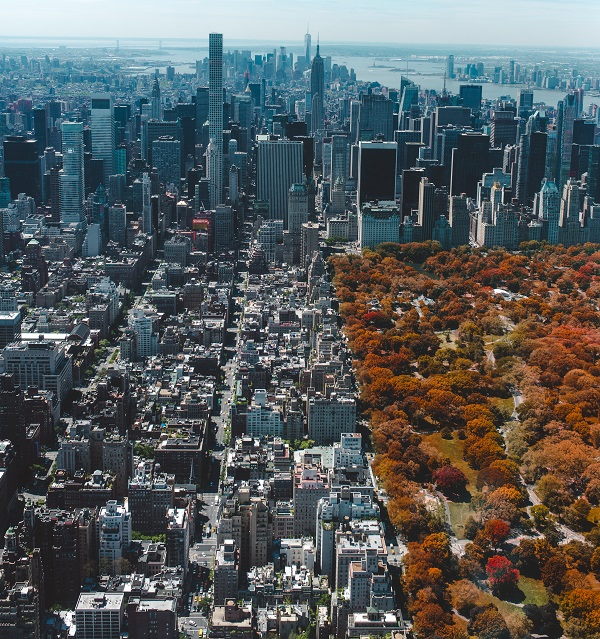 Fall colors in Central Park image via Unsplash