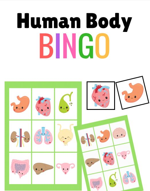Preview of printable Human Body Bingo game cards for kids