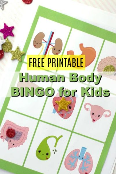 Have fun with your kids playing BINGO by using our human body part themed printable BINGO cards.  You'll love that they are learning, and they will, of course, love that you have a fun game for them to play! These work great for road trips, homeschool, and summer activities.