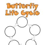 Grab this free printable butterfly life cycle worksheet and learn about how a caterpillar becomes a butterfly. Great addition to your classroom, homeschool, or hands on learning at home. It's perfect for preschoolers and kindergartners, but kids of all ages will enjoy learning about butterflies.