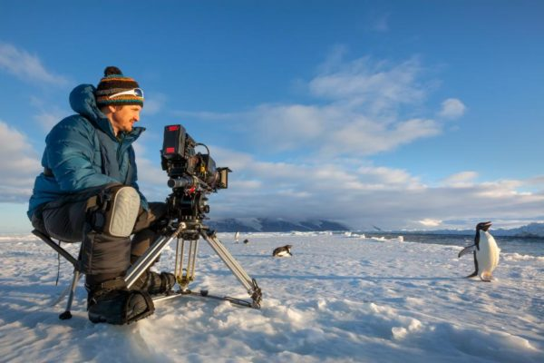 Cameraman on the snow filming penguins for Disneynature