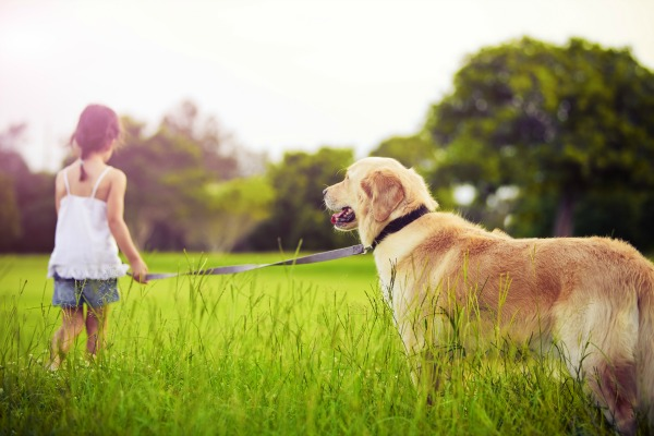 Girl walking through the grass with a dog