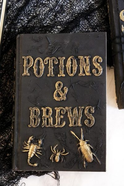 Black book with Potions & Brews in gold lettering and golden bugs on front cover.