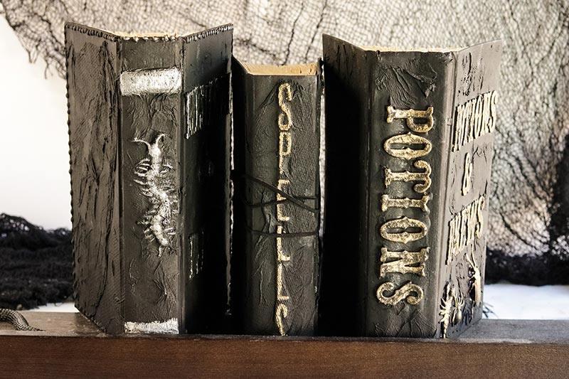 Set of 3 completed homemade spell books on standing on shelf with spines facing out. One with a centipede, one with Spells and one with Potions.