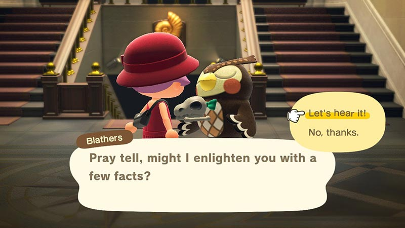 Player speaking to Blathers at the museum in Animal Crossing New Horizons.