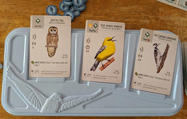 Three cards with birds laying on a light blue tray for Wingspan game.