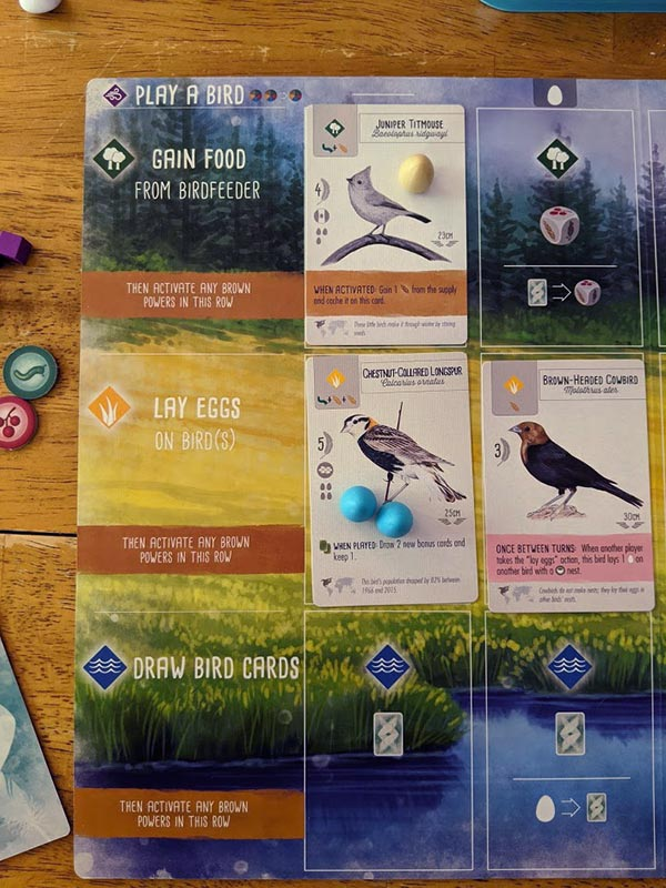 Overhead view of Wingspan player mat with a few bird cards, miniature eggs, and food tokens.