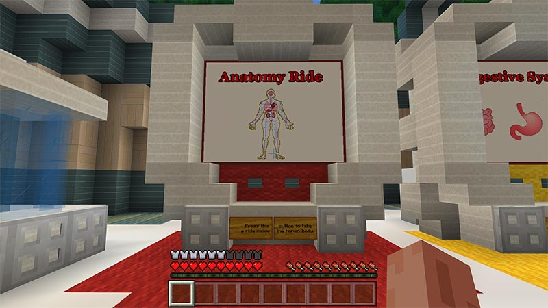 Anatomy ride sign within Minecraft showing a human body.