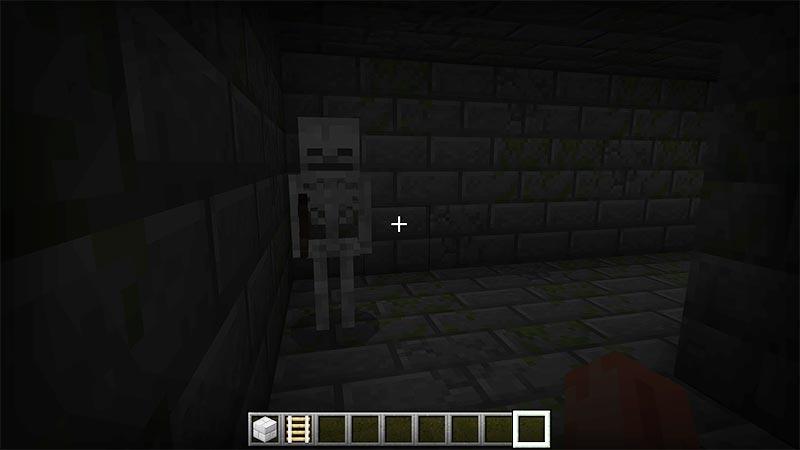 Minecraft skeleton in dark stone hallway.