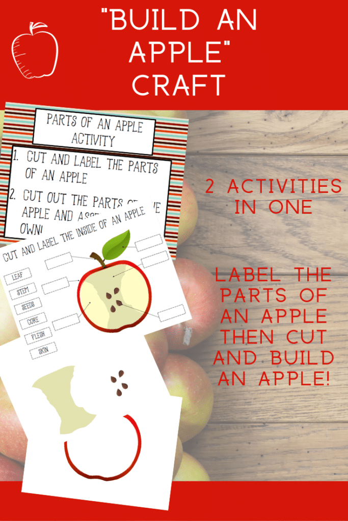 Red text box on top says Build An Apple Craft above preview images of printable activity pages. Additional text states 2 activities in one. Label the parts of an apple then cut and build an apple!