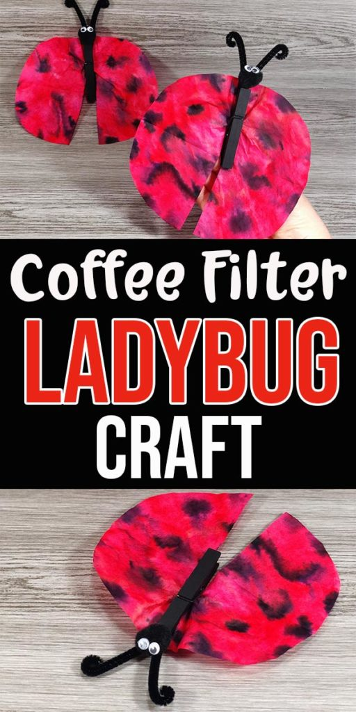 Two completed ladybugs made with coffee filters and clothespins on a grey wood background above text box with craft title. Another finished ladybug laying on grey wood background under text box.