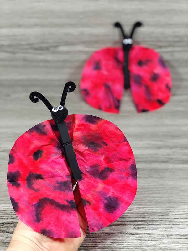 Two coffee filter ladybug crafts, one held up by a hand and another laying against grey wood background.