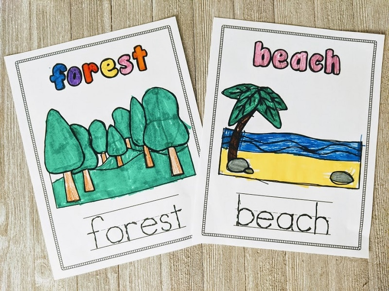 Forest and beach biome coloring pages colored with markers laying on a wooden background.