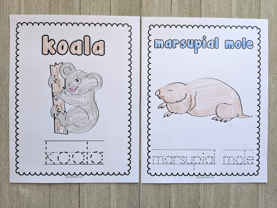 Completed coloring pages for koala and marsupial mole laying side by side.